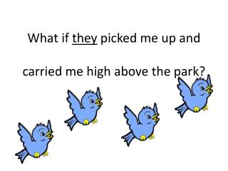 What if  they  picked me up and  carried me high above the park?