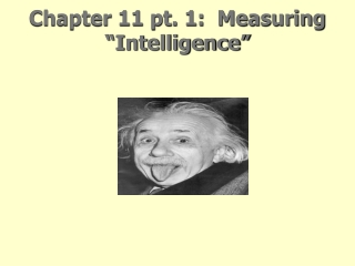 Psychological Theories of Aging personality  Lecture 8   Chapter 7