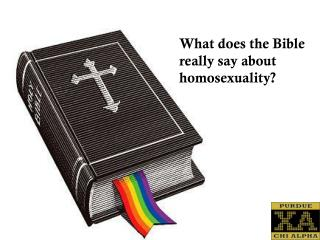 What does the Bible  r eally say about homosexuality?