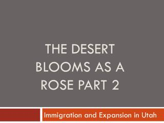 The Desert Blooms as a  Rose Part 2