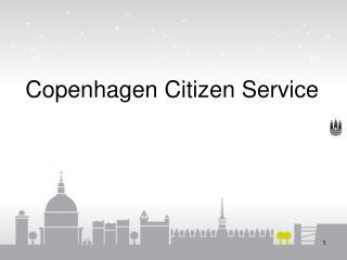Copenhagen Citizen  Service