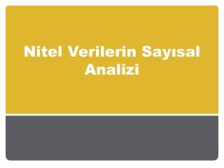 Nitel Verilerin Sayısal Analizi