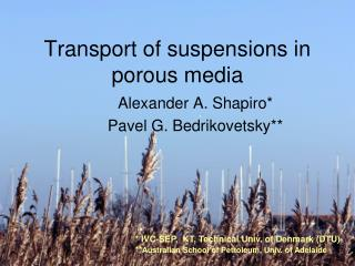 Transport of suspensions in porous media