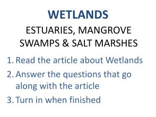 ESTUARIES, MANGROVE SWAMPS & SALT MARSHES