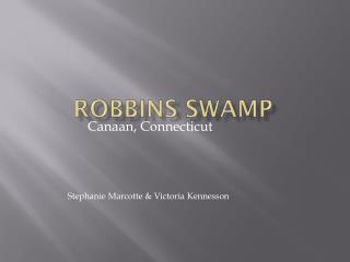 Robbins Swamp