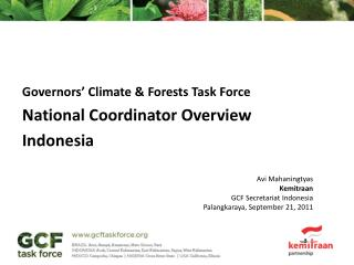 Governors' Climate &  Forests  Task  Force National Coordinator Overview Indonesia