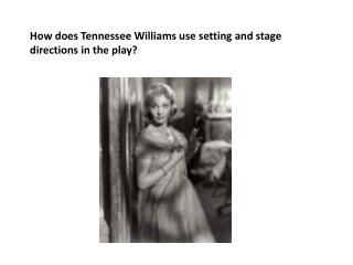How does Tennessee Williams use setting and stage directions in the play?