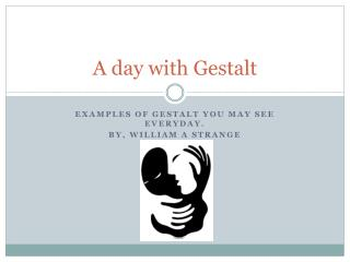 A day with Gestalt