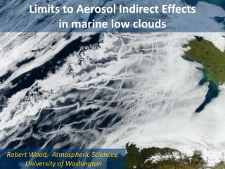 Limits to Aerosol Indirect Effects                         in marine low clouds
