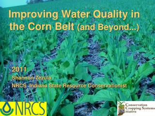 Improving Water Quality in the Corn Belt  (and Beyond...)