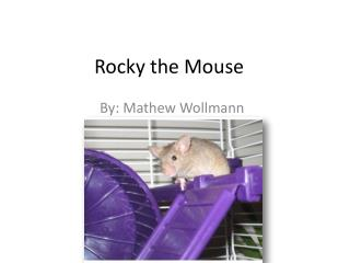 Rocky the Mouse