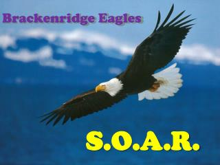 Brackenridge Eagles