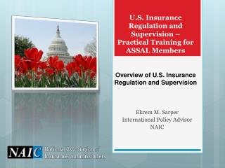 U.S. Insurance Regulation and Supervision � Practical Training for ASSAL Members