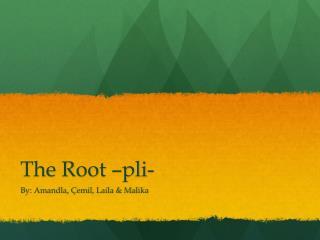 The Root � pli -