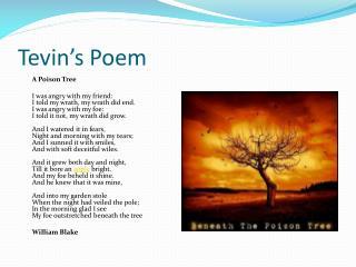 Tevin's  Poem