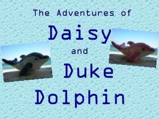 The Adventures of  Daisy and Duke Dolphin