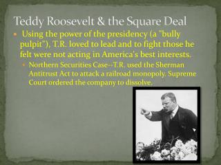 Teddy Roosevelt & the Square Deal