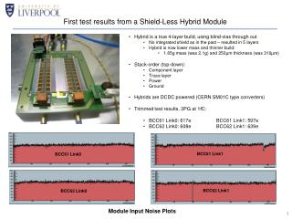 First test results from a Shield-Less Hybrid Module