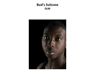 Bud's Suitcase DLM