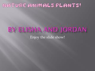 By Elisha and Jordan