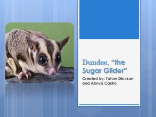 Dundee , �the Sugar Glider�