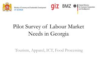 Pilot Survey of  Labour  Market Needs in Georgia