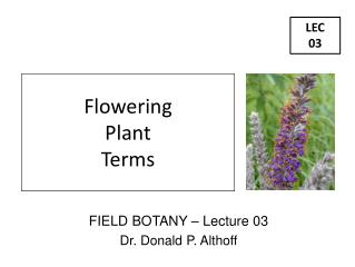 FIELD BOTANY – Lecture 03 Dr. Donald P. Althoff