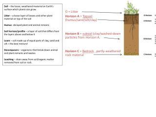 O = Litter Horizon A  =  Topsoil  (humus/sand/silt/clay)