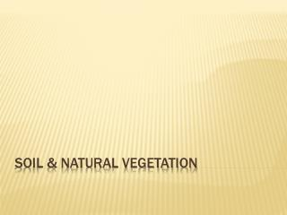 SOIL & NATURAL VEGETATION