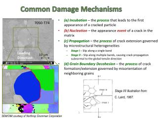 Common Damage Mechanisms