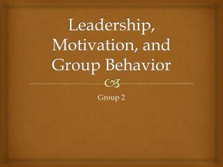 Leadership, Motivation, and Group Behavior