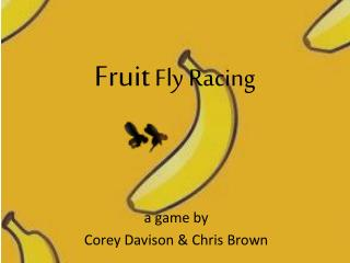 Fruit  Fly Racing