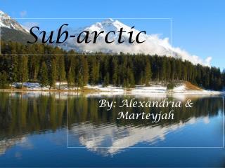 Sub-arctic