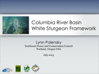 Columbia River  Basin  White Sturgeon Framework