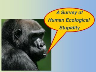 A Survey of Human Ecological  Stupidity