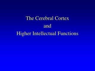 The Cerebral Cortex and Higher Intellectual Functions