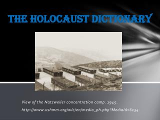 The Holocaust Dictionary