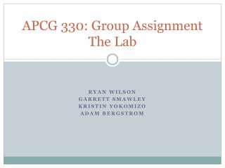 APCG 330: Group Assignment The Lab