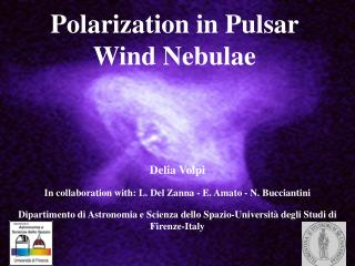 Polarization  in Pulsar Wind  Nebulae
