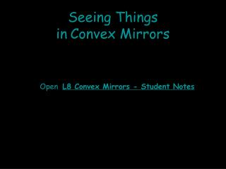 Seeing Things  in Convex Mirrors