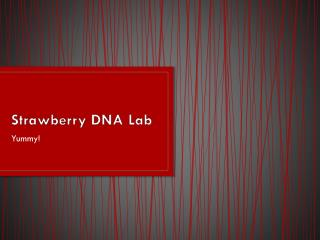 Strawberry DNA Lab