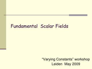 Fundamental Scalar Fields