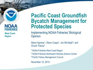 Pacific Coast Groundfish Bycatch Management for Protected Species