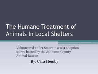 The Humane Treatment of Animals In Local Shelters