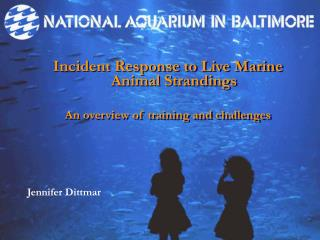 Incident Response to Live Marine Animal Strandings An overview of training and challenges