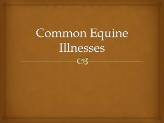 Common Equine Illnesses