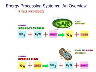 Energy Processing Systems:  An Overview