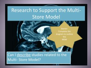 Research to Support the Multi-Store Model