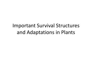 Important Survival Structures and Adaptations in Plants
