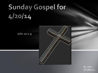 Sunday Gospel for 4/20/14